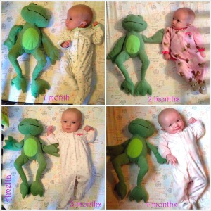 4 month comparison w/ Mr. Frogs
