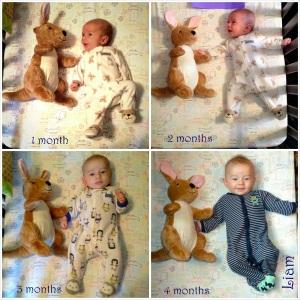 4 month comparison w/ Mr. Bunny Buns